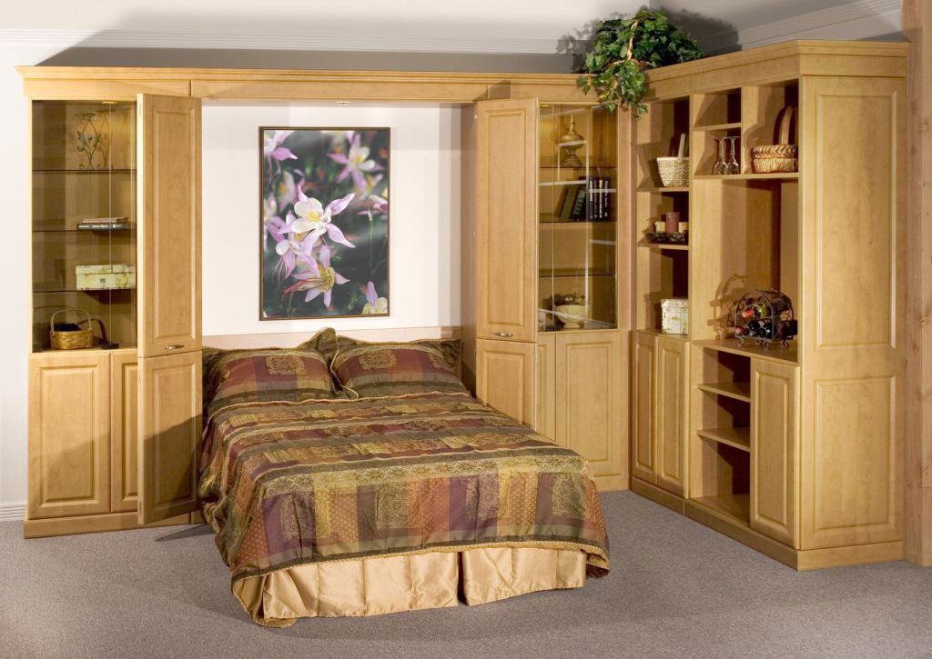 Living Room Murphy Bed